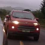 Ford EcoSport White Grey (6)